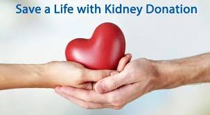 kidneydonationpic
