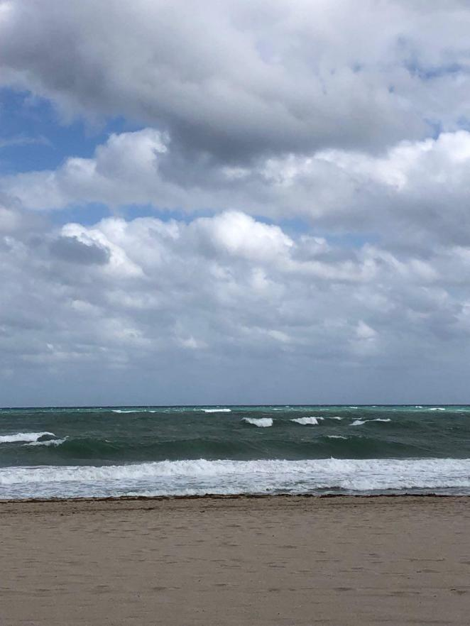 photo_2019-02-07_13-32-21 waves